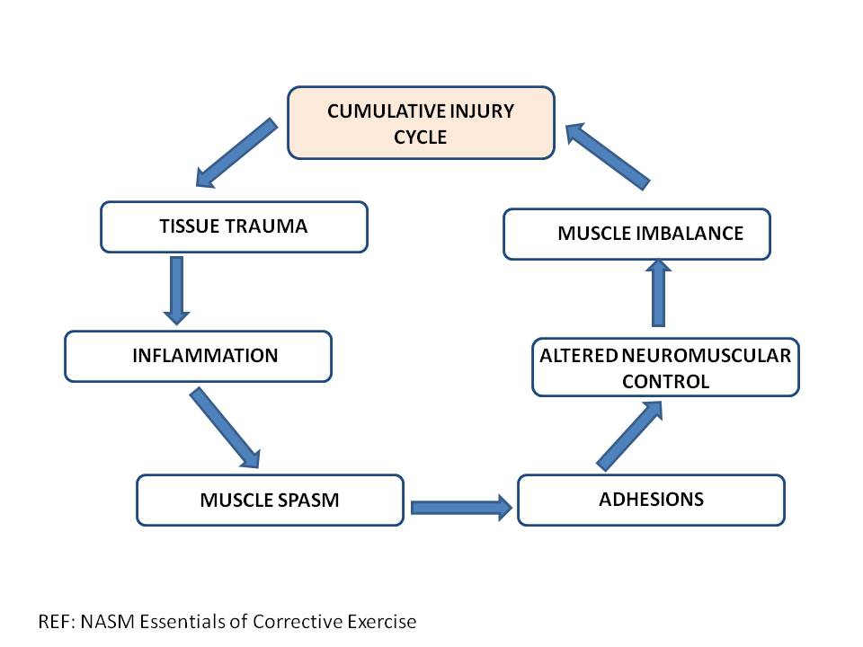2015_Cumulative_Injury_Cycle